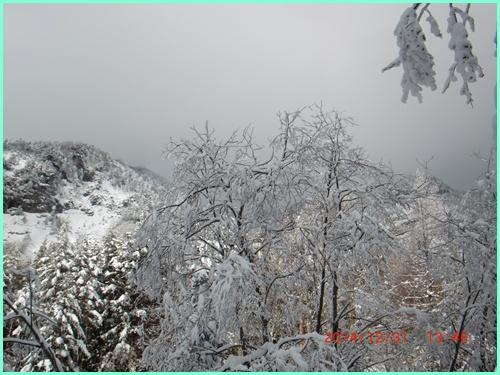 011 赤岳鉱泉へ