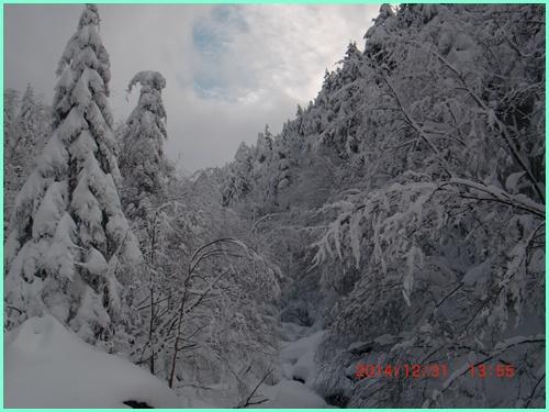 012 赤岳鉱泉へ