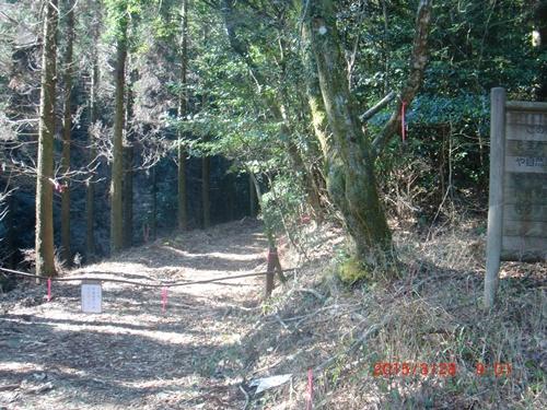 003 林道登山口