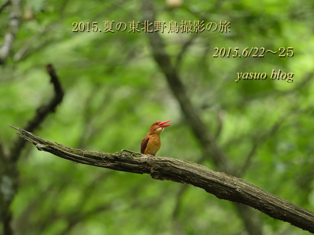 DSC_0458A_edited-3.jpg