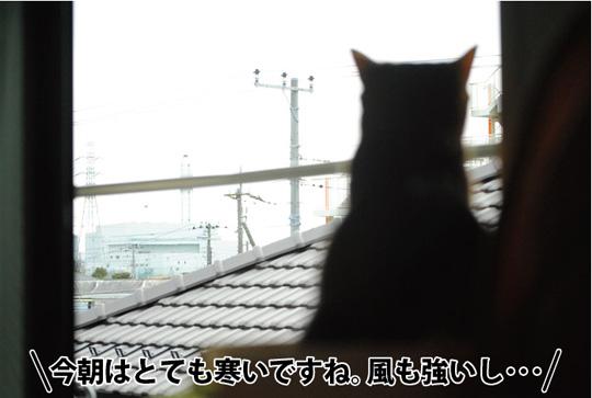 20150209_01.jpg