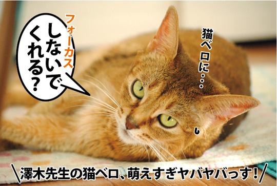 20150221_04.jpg
