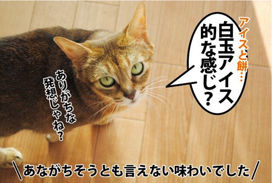 20150227_01.jpg
