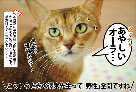 20150307_03.jpg