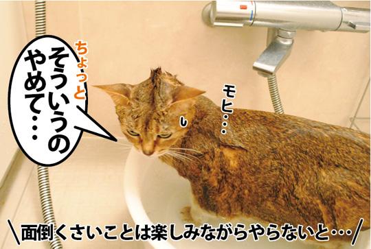 20150309_02.jpg