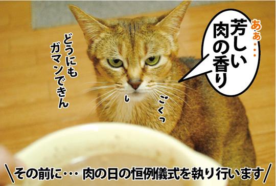 20150310_03.jpg