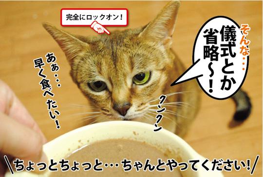20150310_04.jpg