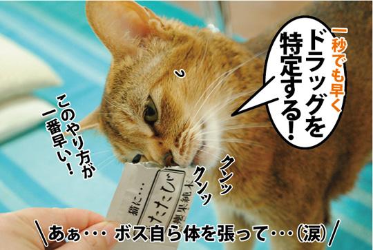 20150312_05.jpg