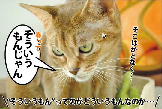 20150316_03.jpg