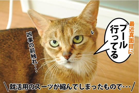 20150319_01.jpg