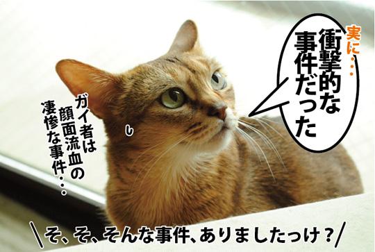 20150321_02.jpg