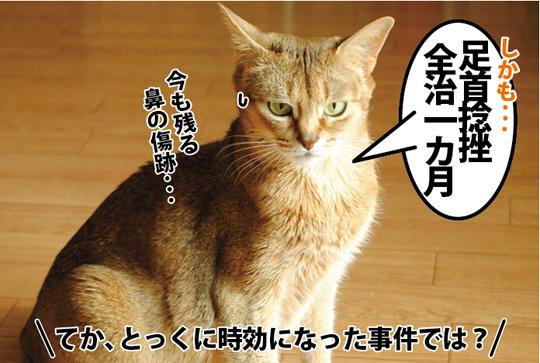 20150321_03.jpg