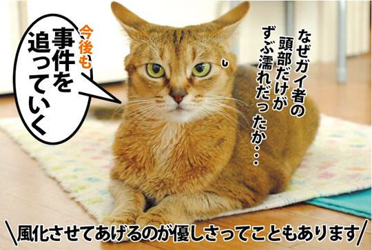 20150321_06.jpg