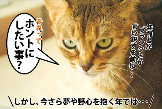20150326_03.jpg