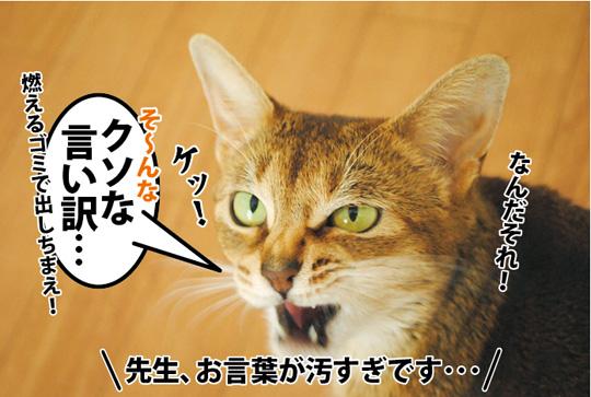 20150326_04.jpg