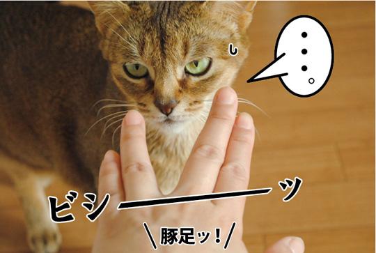 20150328_03.jpg