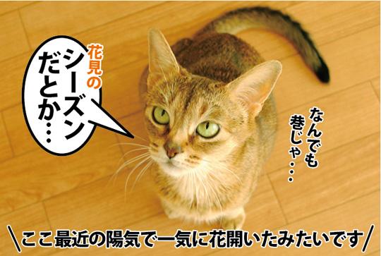 20150330_01.jpg
