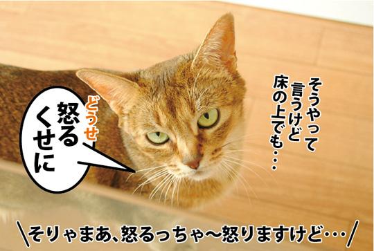 20150503_04.jpg