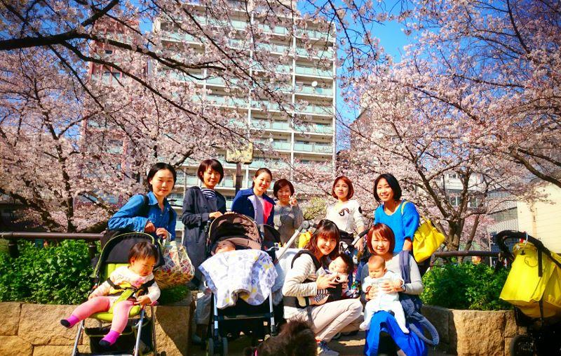 20150330桜 (800x507)