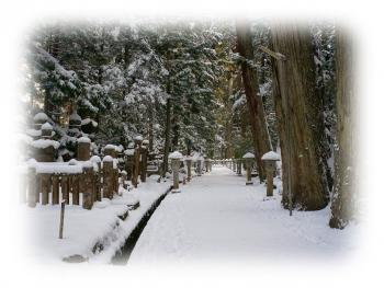 高野山  2015 平成27年 初詣