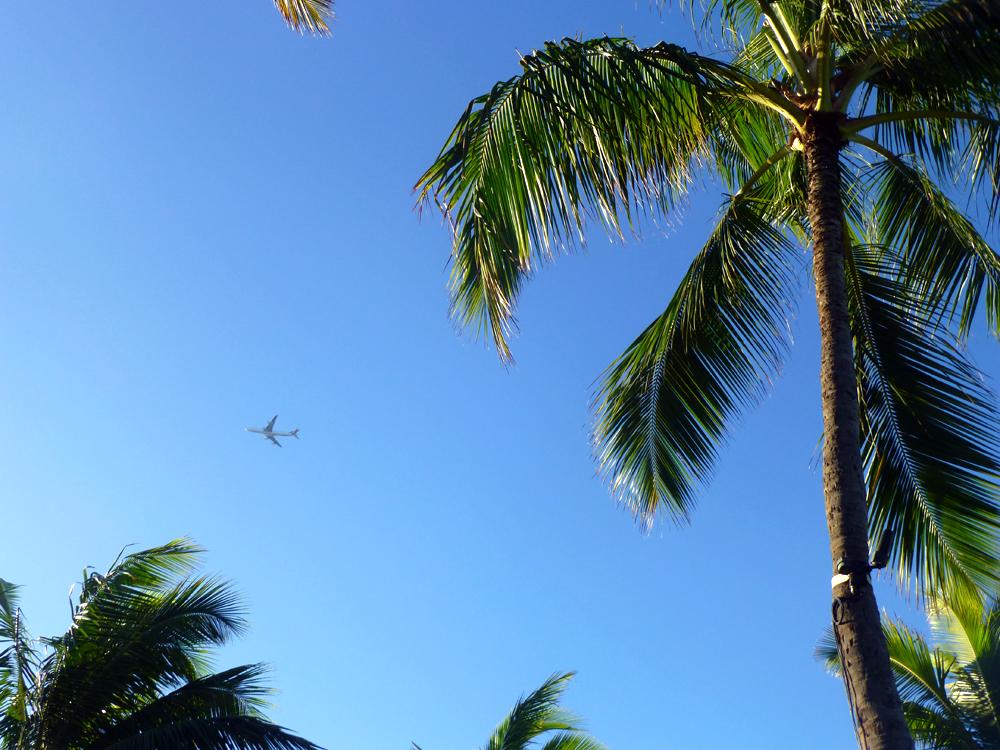 ハワイ写真26