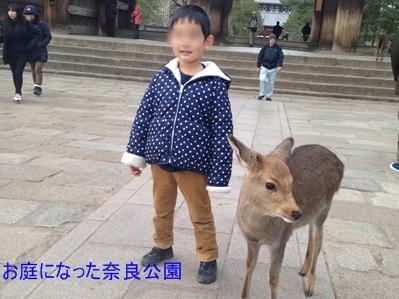 鹿とこうくん
