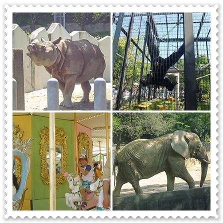 こうくん動物園