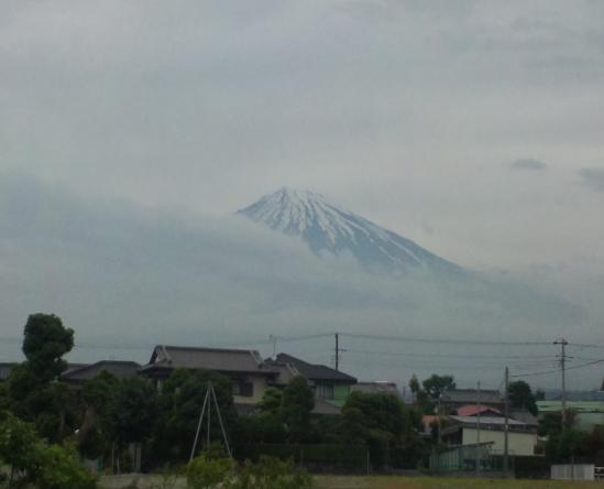 fujisan325.jpg