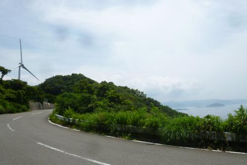 みかん海道