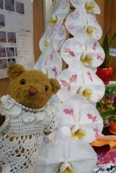 KARENDO さん ベァーと蘭の花
