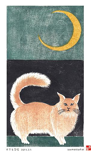 月下之美猫-コピー