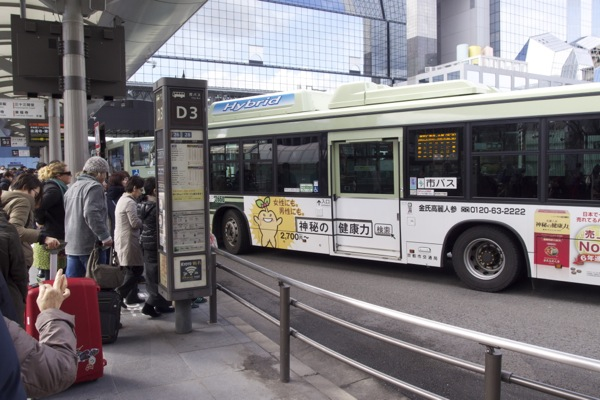 P3103272.jpg