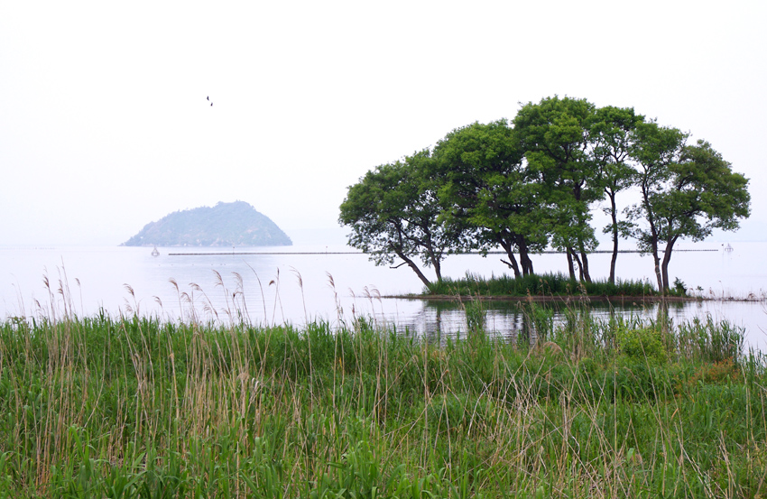 竹生島を望む02