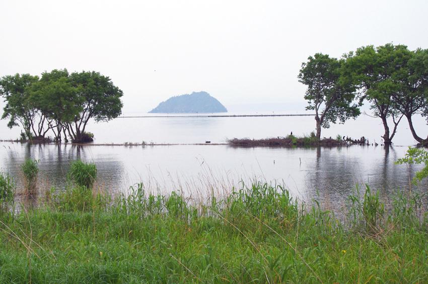 竹生島を望む01