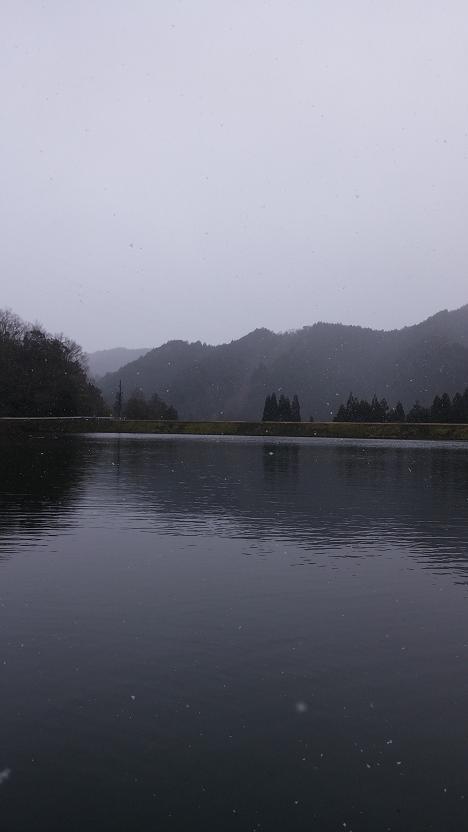 201517178.jpg