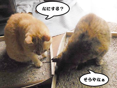15_06_27_2.jpg