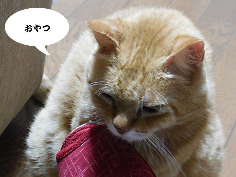 15_07_07_2.jpg