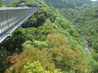 綾 照葉大吊橋