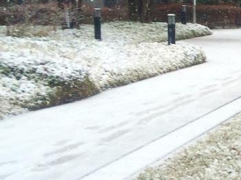 2015年1月東京初積雪2 by占いとか魔術とか所蔵画像