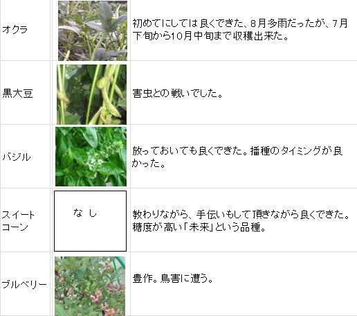 今年の野菜一覧