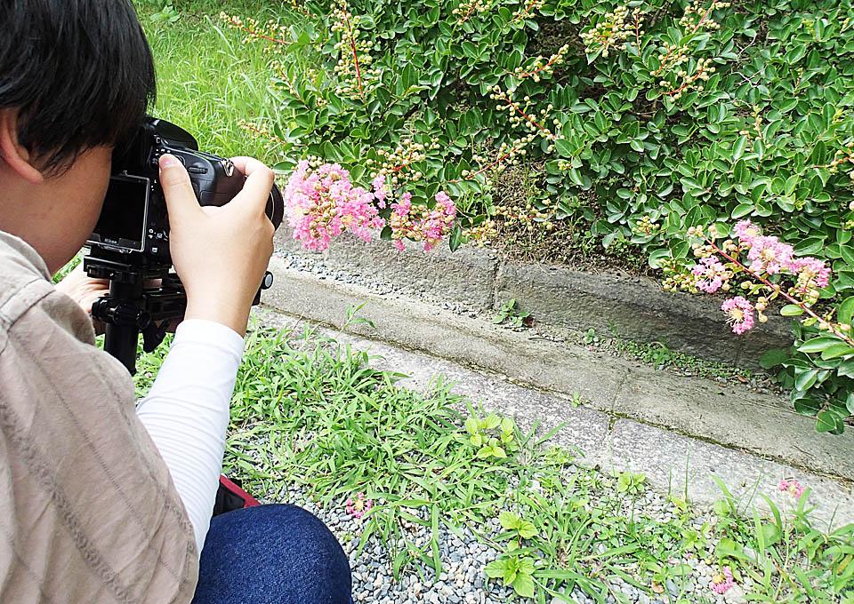sarusuberi_248.jpg