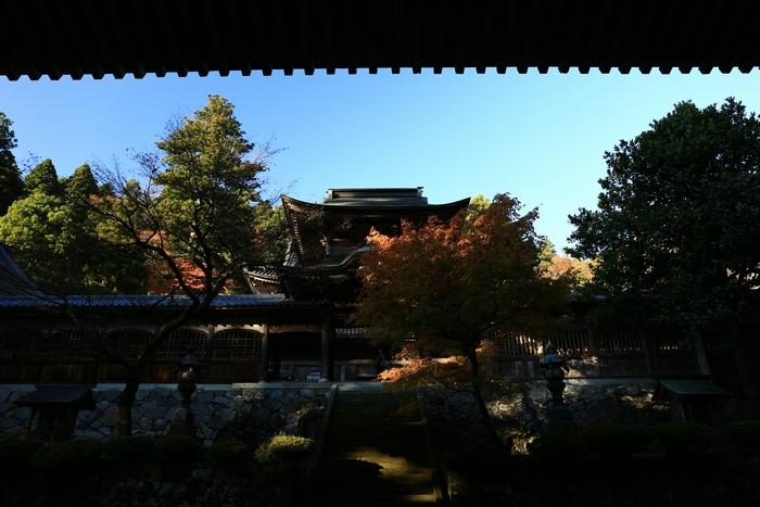 eiheiji1411_05.jpg