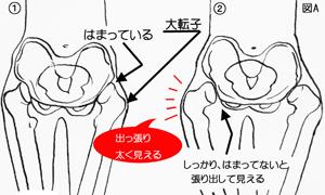 anti_20130920_1.jpg