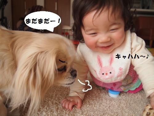 013_convert_20150320154257.jpg