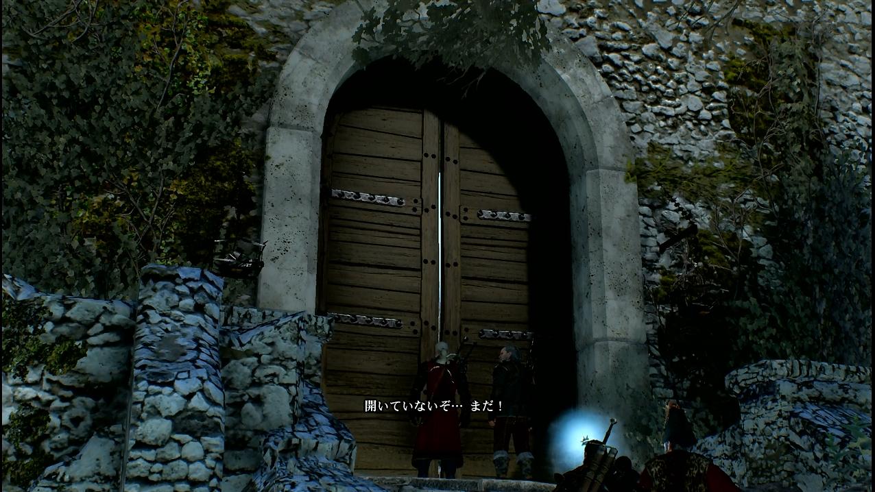 witcher37_091.jpg