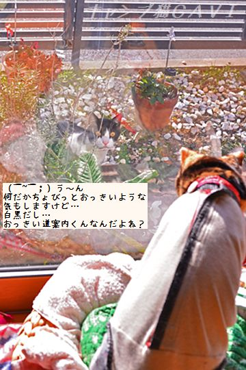 150125_5136a.jpg