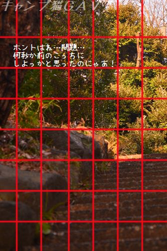 150125_5263q.jpg