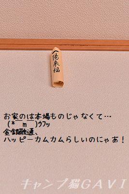 150204_5871.jpg