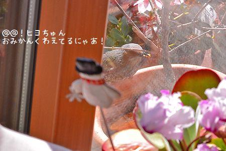 150220_6706a1.jpg