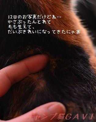 150412_8961.jpg
